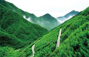Anji, Moganshan & Qiandao Lake Getaway