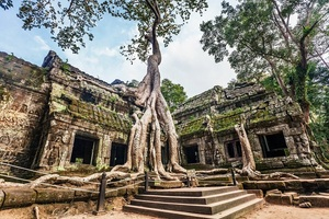 [Cambodia Package] 6 Days from Shanghai