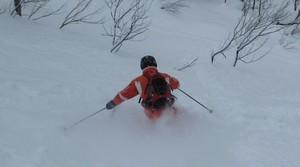 <Hokkaido Package> Powder Snow in Niseko